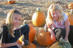The Corley Ranch pumpkin patch