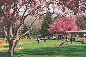 Elko's City  	  Park is an ornament to the vivacious little city.