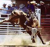 The National Intercollegiate Rodeo Association Western Regional Finals will be held in Elko May 15, 16 and 17, at the Elko County Fairgrounds.