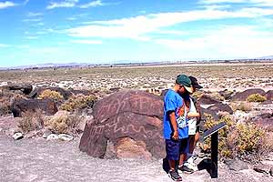 Isaac and Annabelle study human antiquity at Grimes Point.