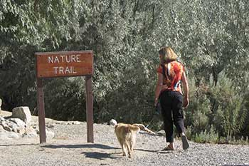Nature Trail at Rye Patch State Recreation Area on Interstate 80 east of Lovelock Nevada