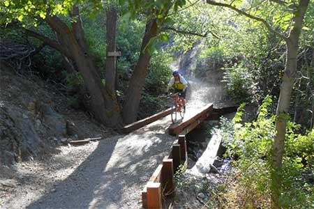 Mountain biking in Carson Valley Nevada