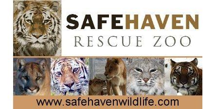 SafeHavenZoo