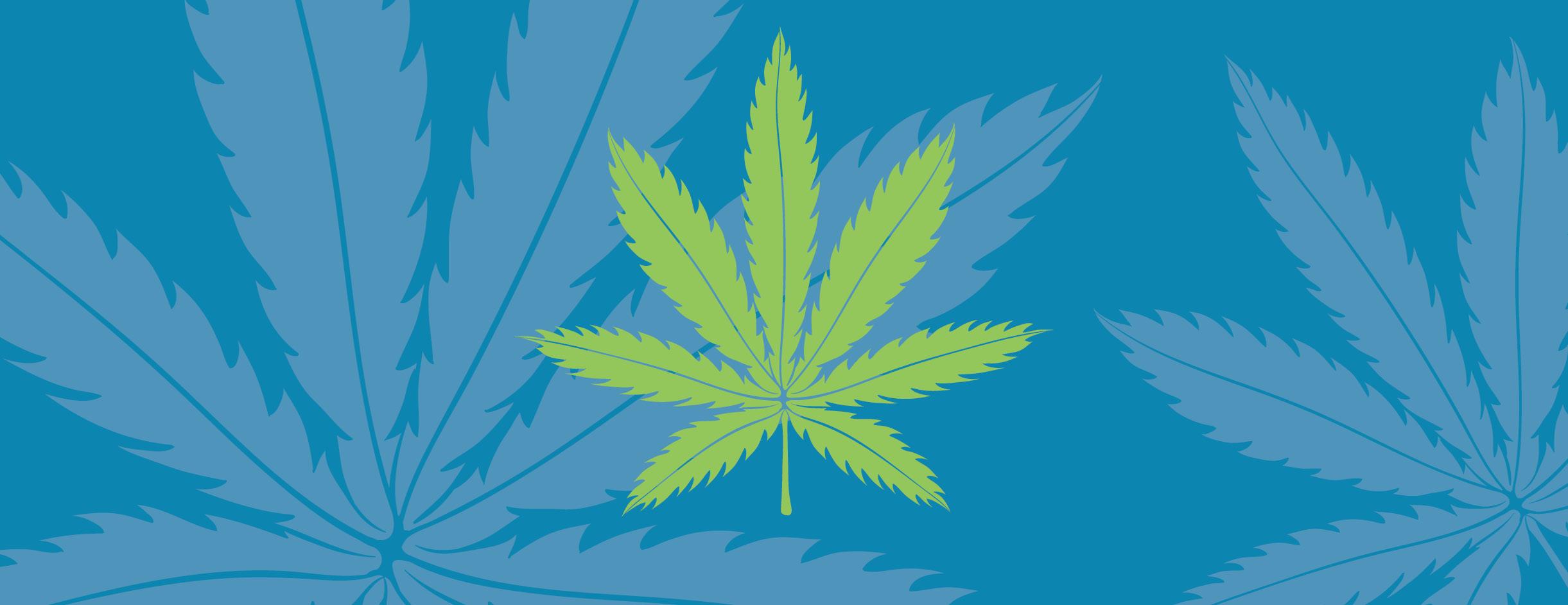 Mynt Cannabis Dispensary