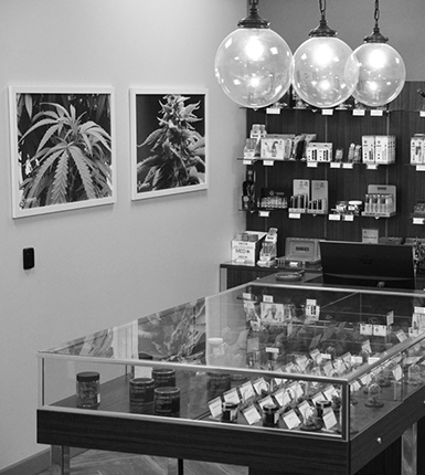 Jenny's Dispensary – Las vegas