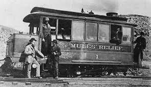 Mule's Relief, Austin Nevada